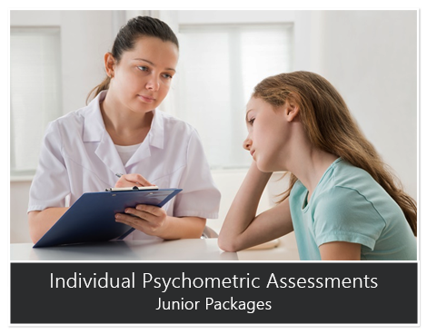 Individual Psychometric Assessments Junior Packages